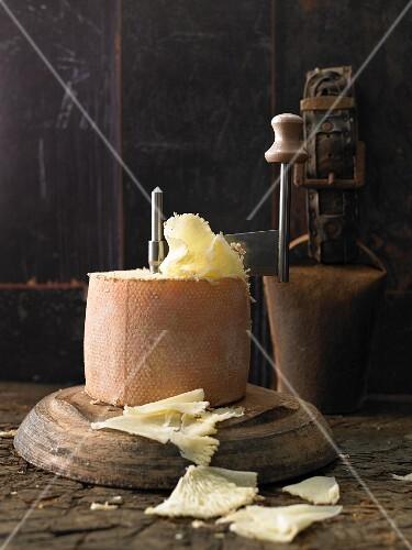 Tete De Moine cheese with a girolle