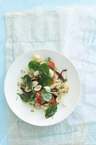 A colourful pasta salad with spinach