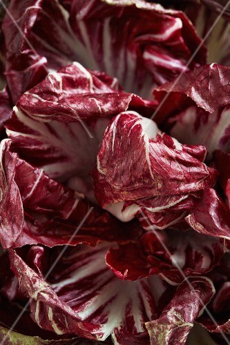 Radicchio (close-up)