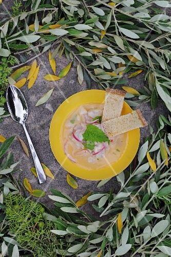 Seabream ceviche with red onions and bread (seen from above)