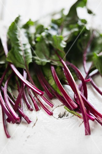 Red-stemmed chard on a white surface