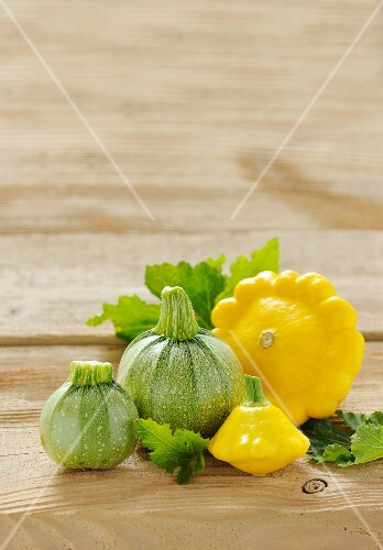 Round courgettes and patty-pan squash