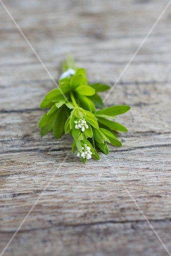 Woodruff with flowers on a wooden board