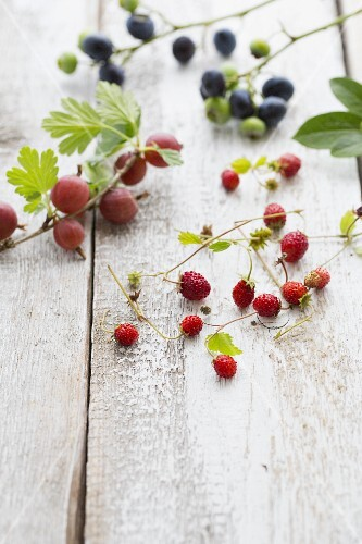 A sprig of gooseberries, a sprig of blueberries and wild strawberries on a wooden board