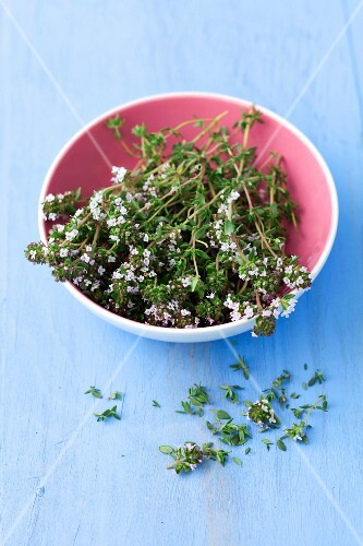 Fresh thyme with leaves