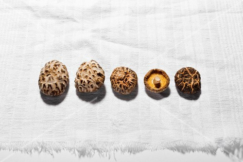 Dried shiitake mushrooms in a row