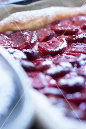 Damson tart dusted with icing sugar