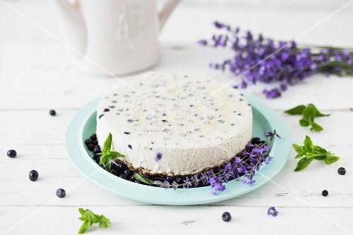 Veganer Käsekuchen mit Vanillecreme, Blaubeeren & Cashewkernen