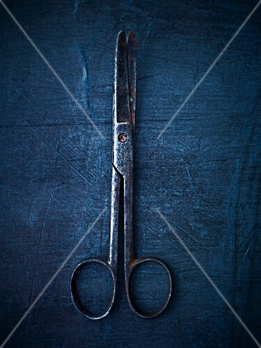 An antique pair of scissors (seen from above)