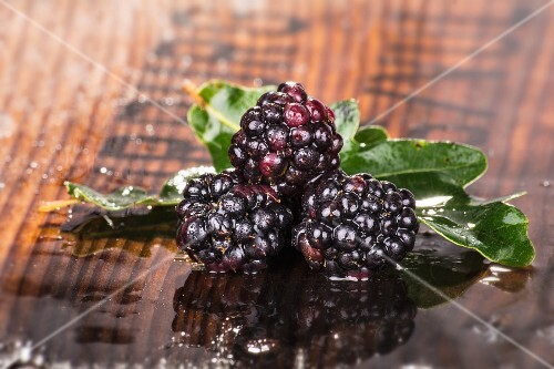 Three blackberries with leaves on a damp wooden surface