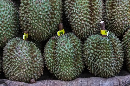 Durians at a market (Thailand)