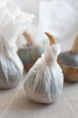 Kuwai (Japanese potatoes) wrapped in paper