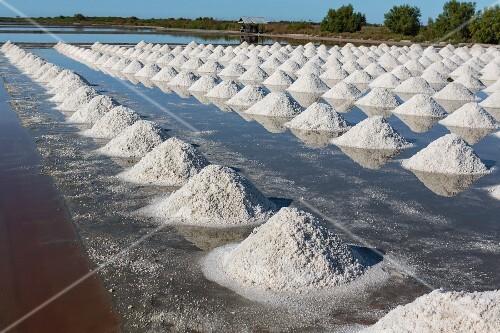 Salt fields in Samut Sakhon, Thailand