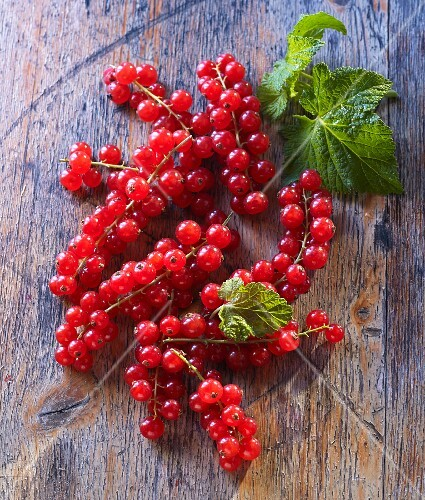 Redcurrants and leaves