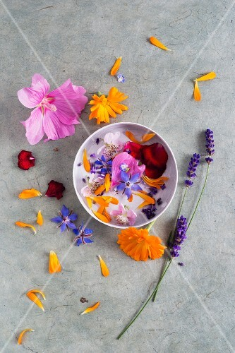 Edible June flowers