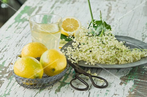A glass of elderflower lemonade with a slice of lemon, elderflowers, a pair of scissors and lemons on a wooden table