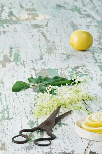 Ingredients for elderflower syrup on a rustic wooden table
