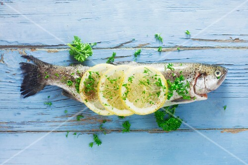 Raw trout with herbs and lemon on a blue wooden surface