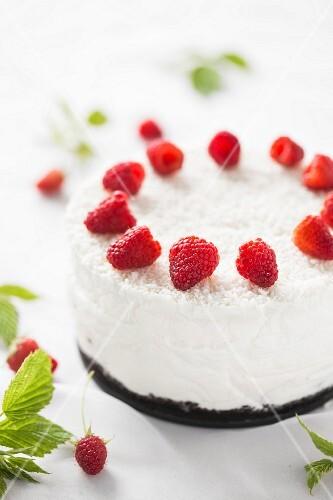 Coconut cheesecake with fresh raspberries