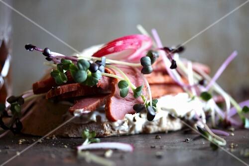 A pastrami, cress and radish sandwich