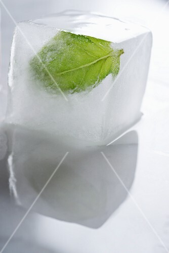 A basil leaf frozen in an ice cube