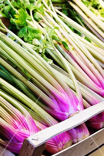 Pink celery in a crate at a market