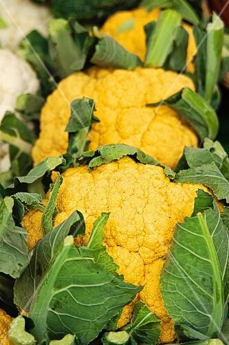 Yellow cauliflowers at a market