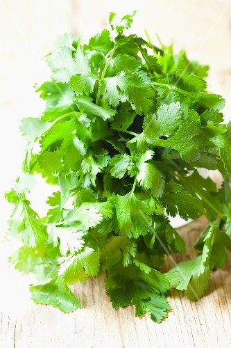 Fresh coriander on a wood background