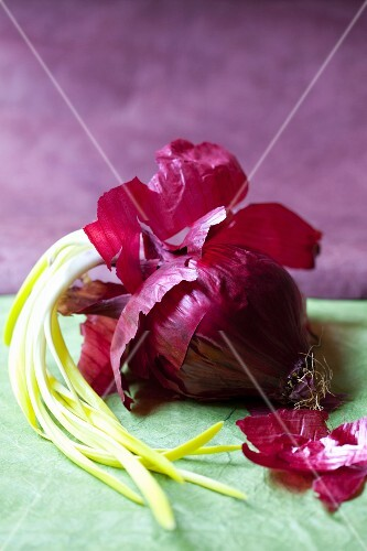 A sprouting red onion