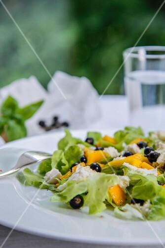 Oak leaf lettuce with mozzarella, mango and blackcurrants