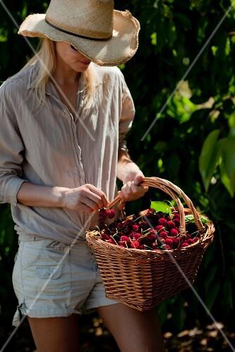 A women carrying a basket of cherries in a garden