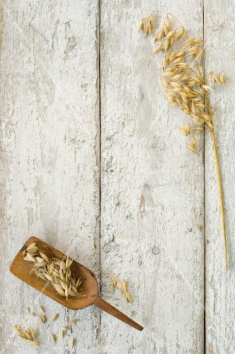 Ears of wheat on a wooden scoop and on a wooden surface (seen from above)