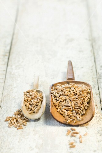 Two scoops of spelt on a wooden surface