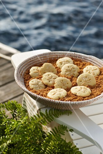 Sand dollar cookies (USA)