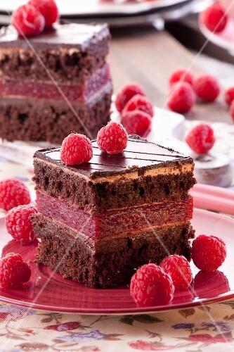 Chocolate sponge cake with a raspberry cream filling
