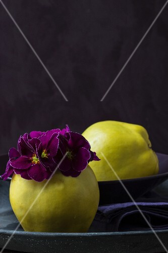 Two quinces with purple flowers and a purple fabric napkin as table decoration