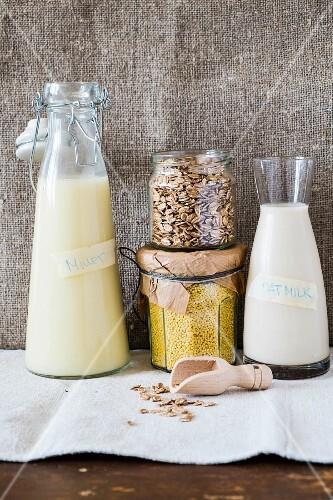 Millet milk, oat milk, millet and oats