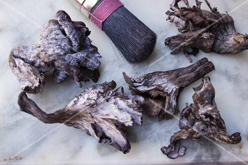 Black chanterelles with a brush on a marble surface