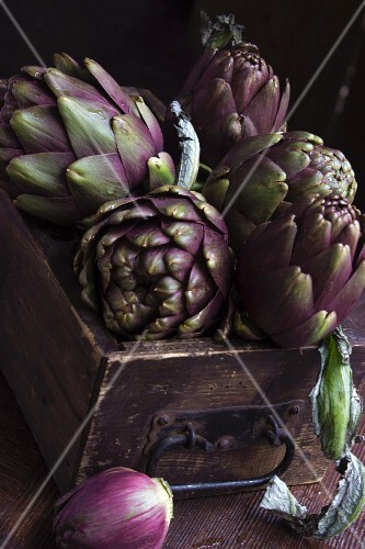 Raw artichokes in an antique wooden drawer