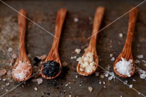 Various types of sea salt on wooden spoons