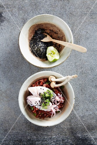 Red rice with steamed squid and furikake seasoning