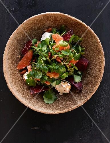 Herbstsalat mit Rote Bete, Grapefruit und Käse