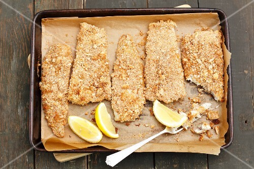 Breaded baked fish on a baking tray