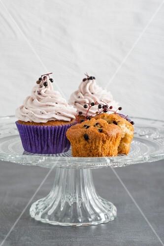 Cupcakes with elderberries with elderberry cream