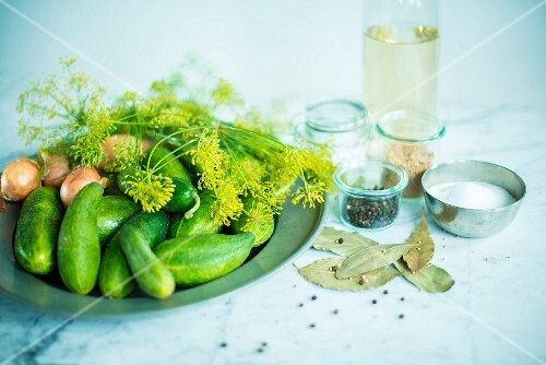 Pickling cucumbers with dill, vinegar and spices