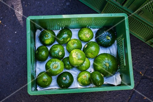Round courgettes in a crate