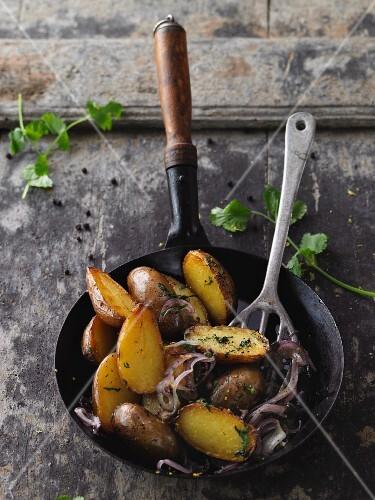 Fried potatoes with coriander grremolata