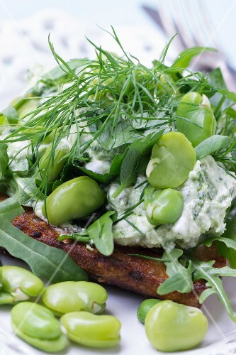 Cream cheese crostini with fresh herbs, green beans and rocket