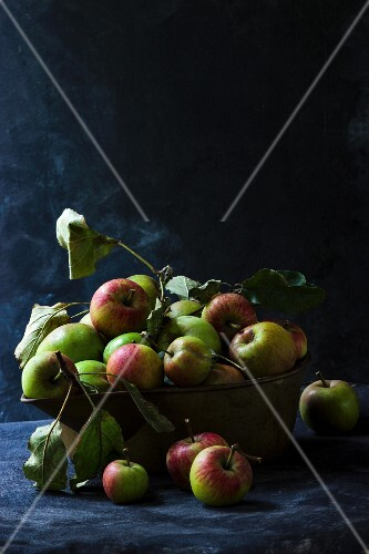 an arrangement of freshly picked country apples in a brass chute against a black background