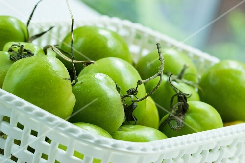 Green tomatoes in a white plastic basket